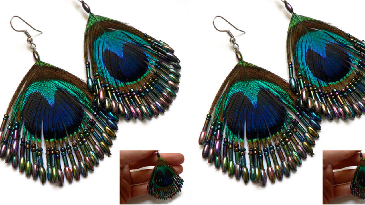 Peacock Feather Designs